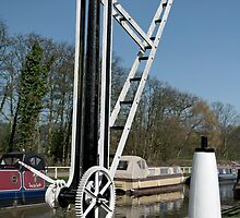 Old Canal Side Crane, Fradley Junction  by Rod Johnson