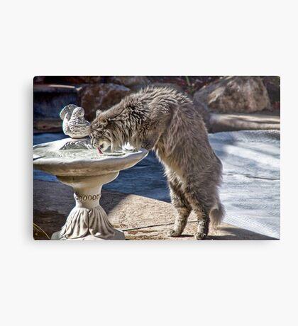 Cat Drink Metal Print