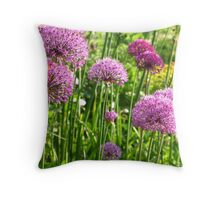 Know your onions! Throw Pillow