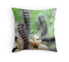 Freshly Hatched Throw Pillow
