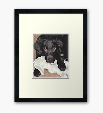 Brady with her bunny Framed Print