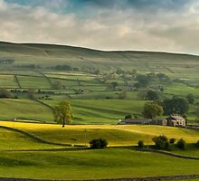 Swaledale In The Yorkshire Dales by John Hall