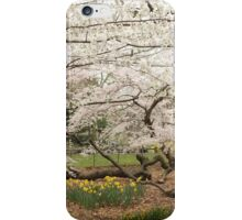Central Park NYC iPhone Case/Skin