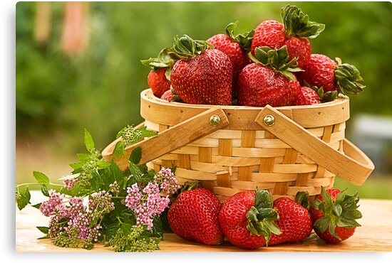 Strawberries Any one? by Trudy Wilkerson