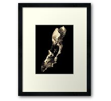 Call of Duty Framed Print