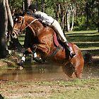 Water Jump Series by Caroline Angell