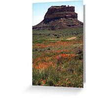 Wild flowers among rocks Greeting Card