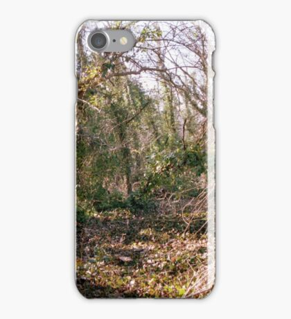 Hidden Forest iPhone Case/Skin