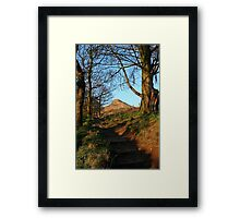 Roseberry through the trees Framed Print