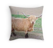 Long-Haired Cow - Scottish Highland Throw Pillow