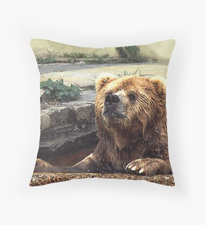 Kodiak Cool Off Throw Pillow