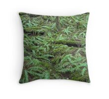 lush green forest , Golden Ears Provincial Park , British Columbia Throw Pillow