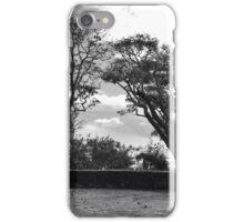 Fiji Lanscape iPhone Case/Skin