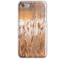 Dry Reeds with Flower iPhone Case/Skin