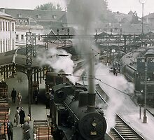 Steam trains at Bern station 1957 by Fred Mitchell