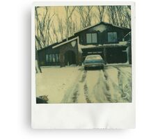 Winter Abode Canvas Print