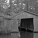 Waterman's Old  Boathouse by hatterasjack