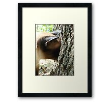 WHERE DID IT GO? Framed Print