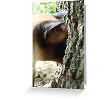 WHERE DID IT GO? Greeting Card