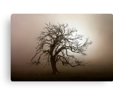 Lifting Fog Canvas Print