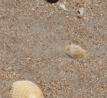Beachcombers!  by John  Kapusta