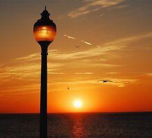 KEEP THE LIGHT BURNING by Scott  d'Almeida