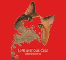 Life Without Cats ...I Don't Think So! Kids Clothes