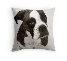 Dakota - 3 Throw Pillow