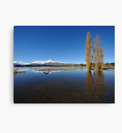 landscape of lake Tekapo in south New Zealand Canvas Print