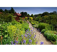 Up The Garden Path Photographic Print