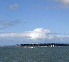 Sail boats on Waitemata Harbour - Auckland by archieswell