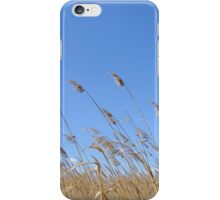Reeds Moved by the Wind iPhone Case/Skin