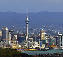 Auckland City taken from the top of Rangitoto Island by archieswell