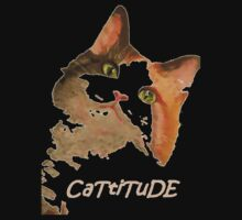 Cattitude Kids Clothes