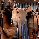 The Saddle by GailD