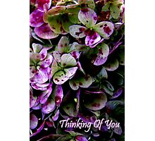 Thinking Of You... Card Photographic Print