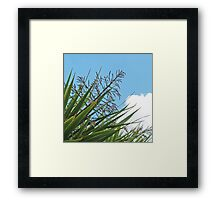 Manx Palm Framed Print
