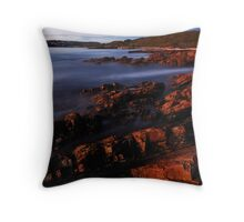You just missed it! Throw Pillow