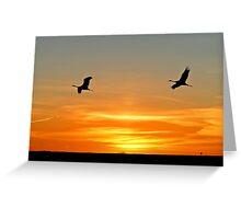 Sunset and Sandhill Crane Greeting Card