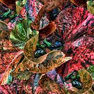 Magna Leaf Duvet by GolemAura