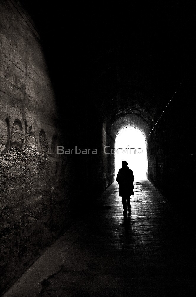 From the light by Barbara  Corvino