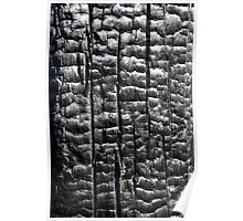 black texture charcoal Poster