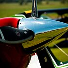 Pitts Special 2 by Matt Sillence