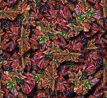 Multi Magna Leaf Duvet by GolemAura