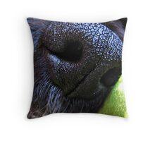 Nostril-damus Throw Pillow