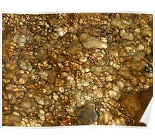 Rocks Under Water Poster