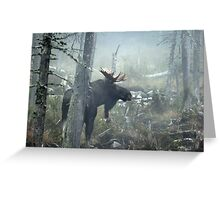 Bull Moose In Morning Mist Greeting Card