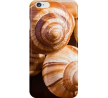 Snail Shells iPhone Case/Skin