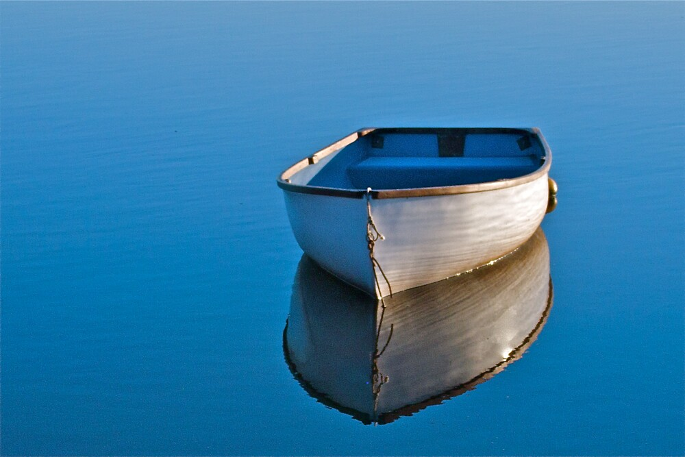Watery Reflections by George Swann
