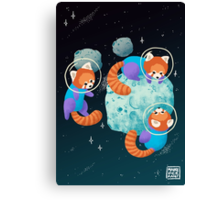 Red Space Pandas Canvas Print
